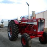 Farmall 1456 Wheatland