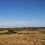 Harvest 2014 1